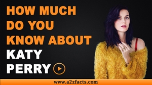 Katy Perry - Everything You Need To Know About...!